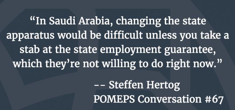 POMEPS Conversation 67: Steffen Hertog